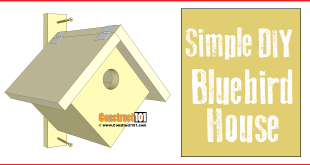 Simple bluebird house plans, free PDF download.