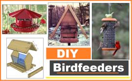 birdfeeder plans